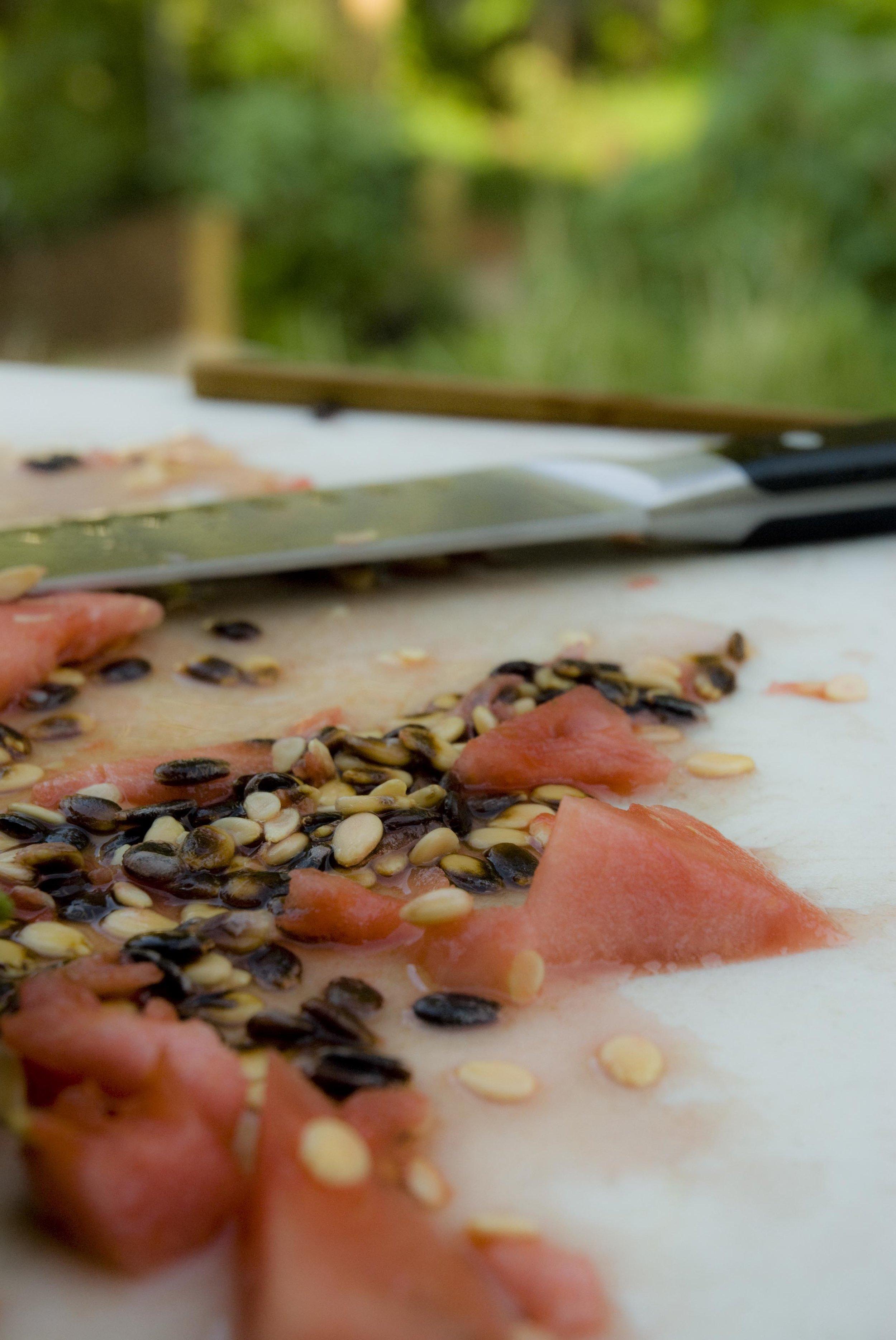 watermelonchip.jpg