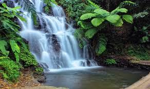 Bali waterfall.jpeg