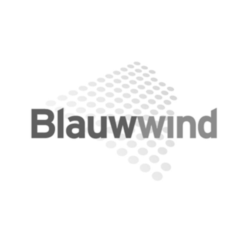 Logo Blauwwind.jpg
