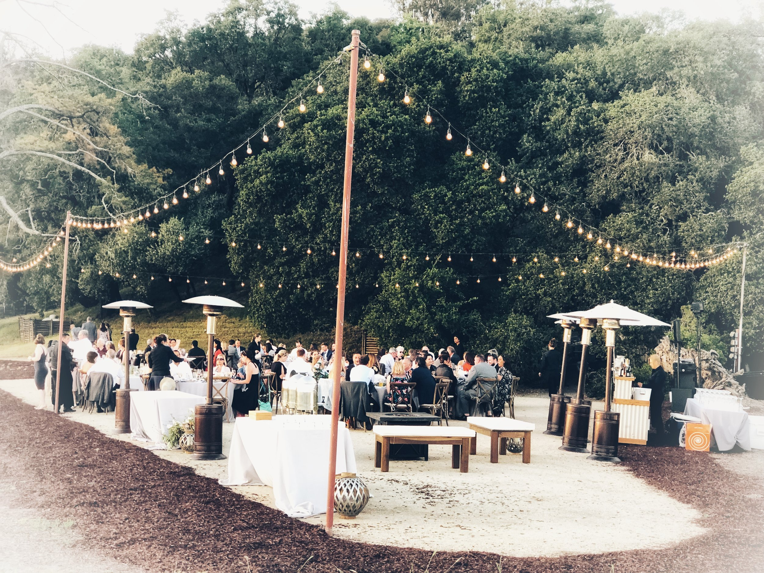 Food Gatherings   We love to bring our community together. We love to take food on the road and feast in magical surroundings - we call it Pirate Dining. Join us for magical nights under the stars - music in the vineyards + the best vistas Sonoma County has to offer