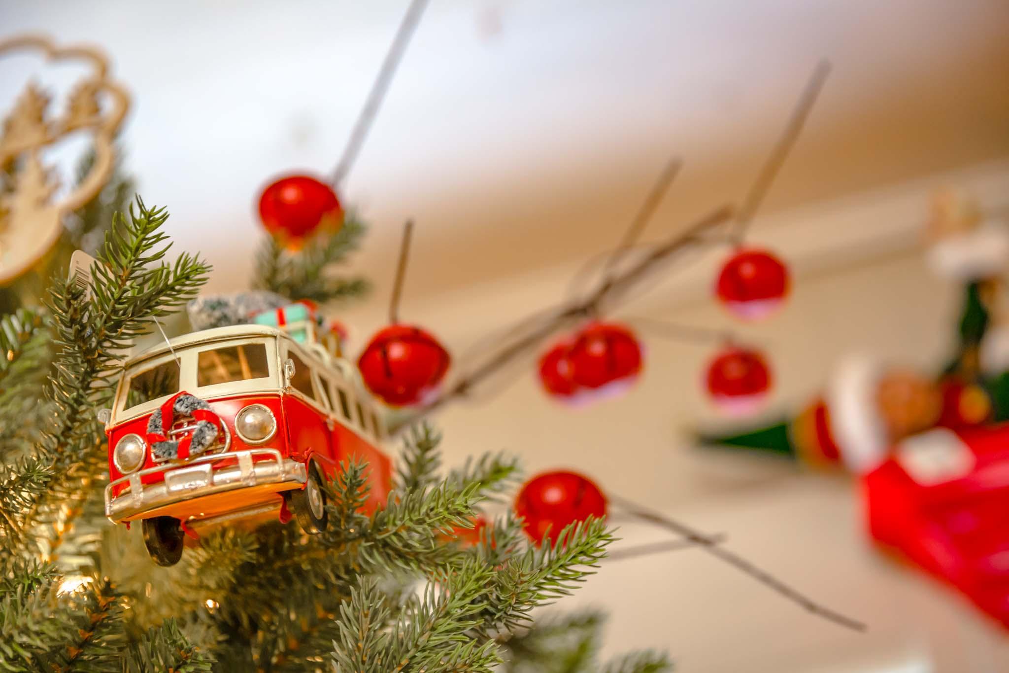 Inspired Southerner_Pine Hill Christmas Tree Farm_063.jpg