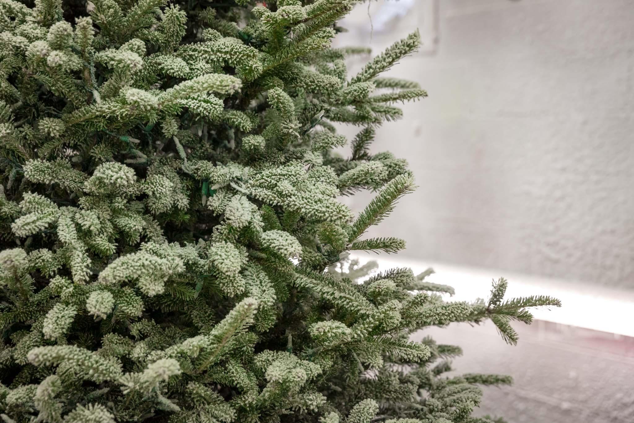 Inspired Southerner_Pine Hill Christmas Tree Farm_084.jpg