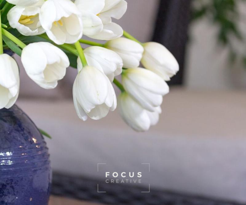 focus-facebook post template.png