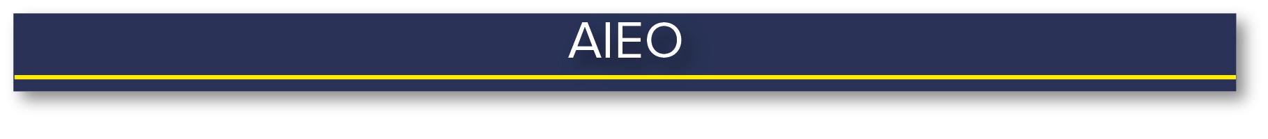 AIEO heading.jpg
