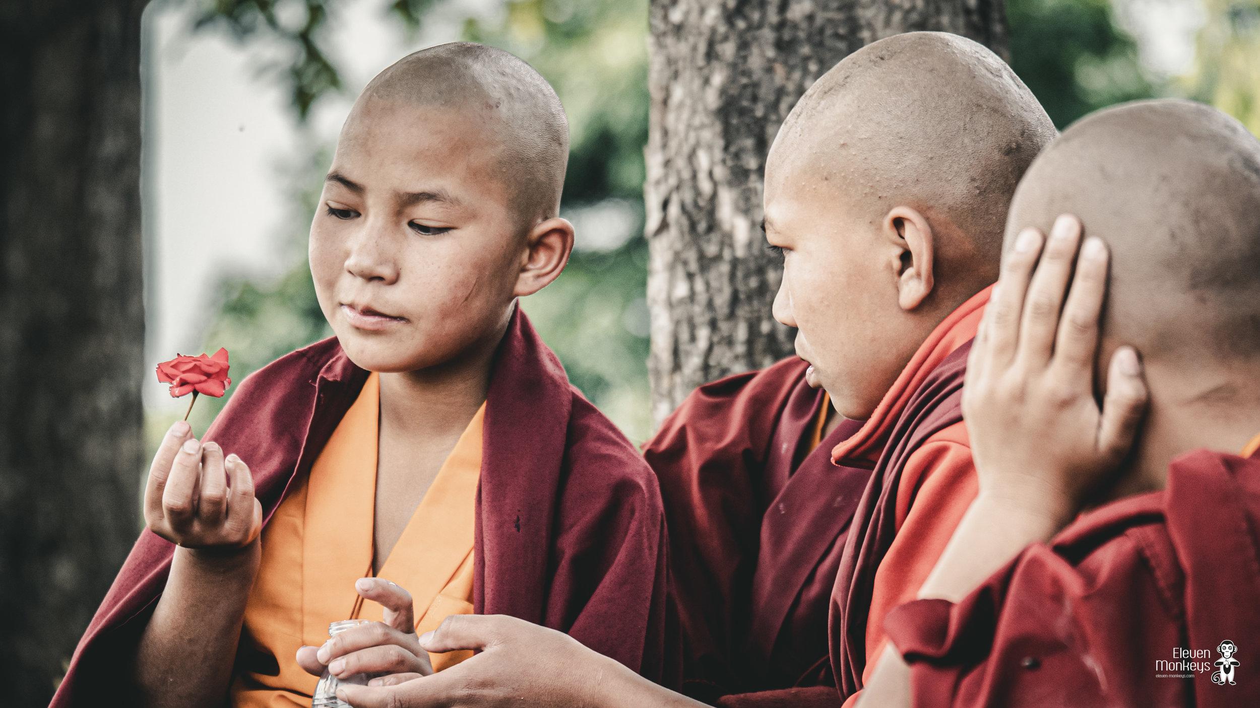 nepal-website-1.jpg