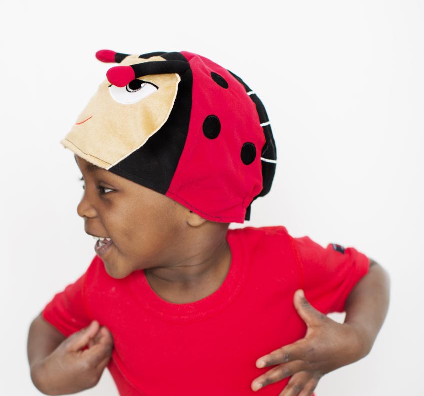 5119-ladybird_2.jpg