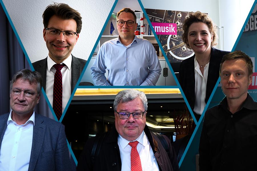 Jörg Meuthen, Daniel Caspary, Tiemo Wölken, Reinhard Bütikofer, Nicola Beer, Martin Schirdewan