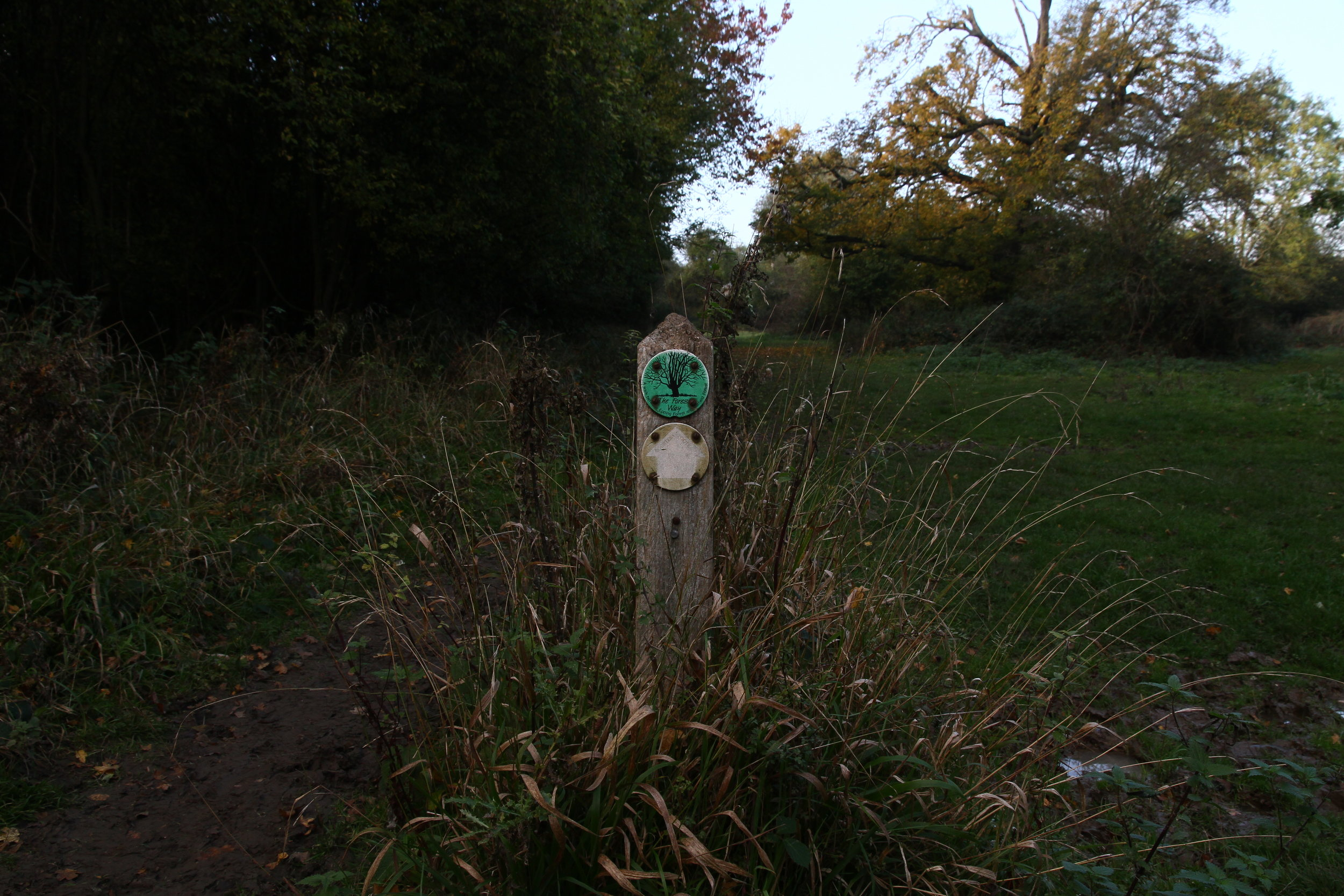 Hatfield Forest, Essex IV.JPG