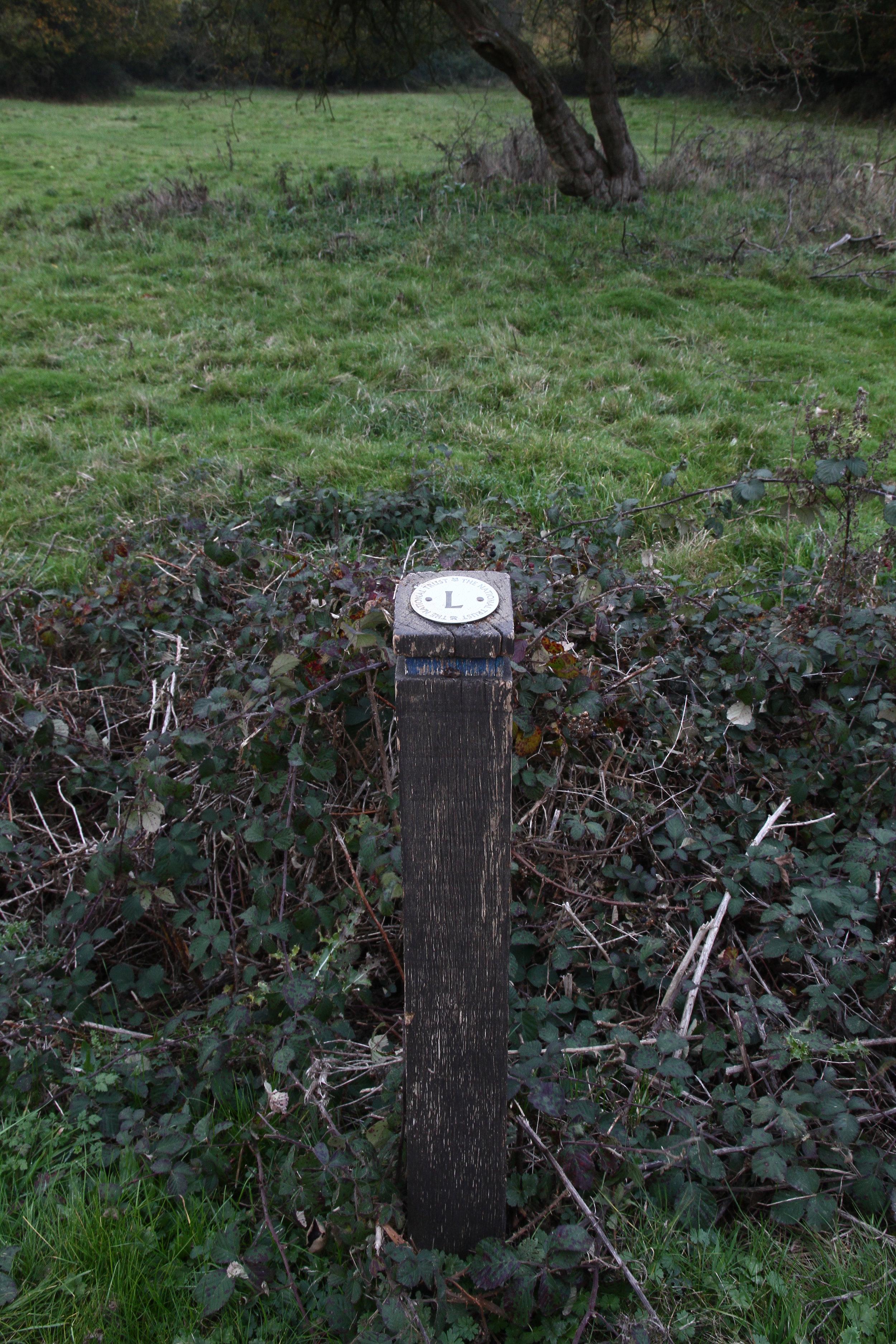 Hatfield Forest, Essex III.JPG