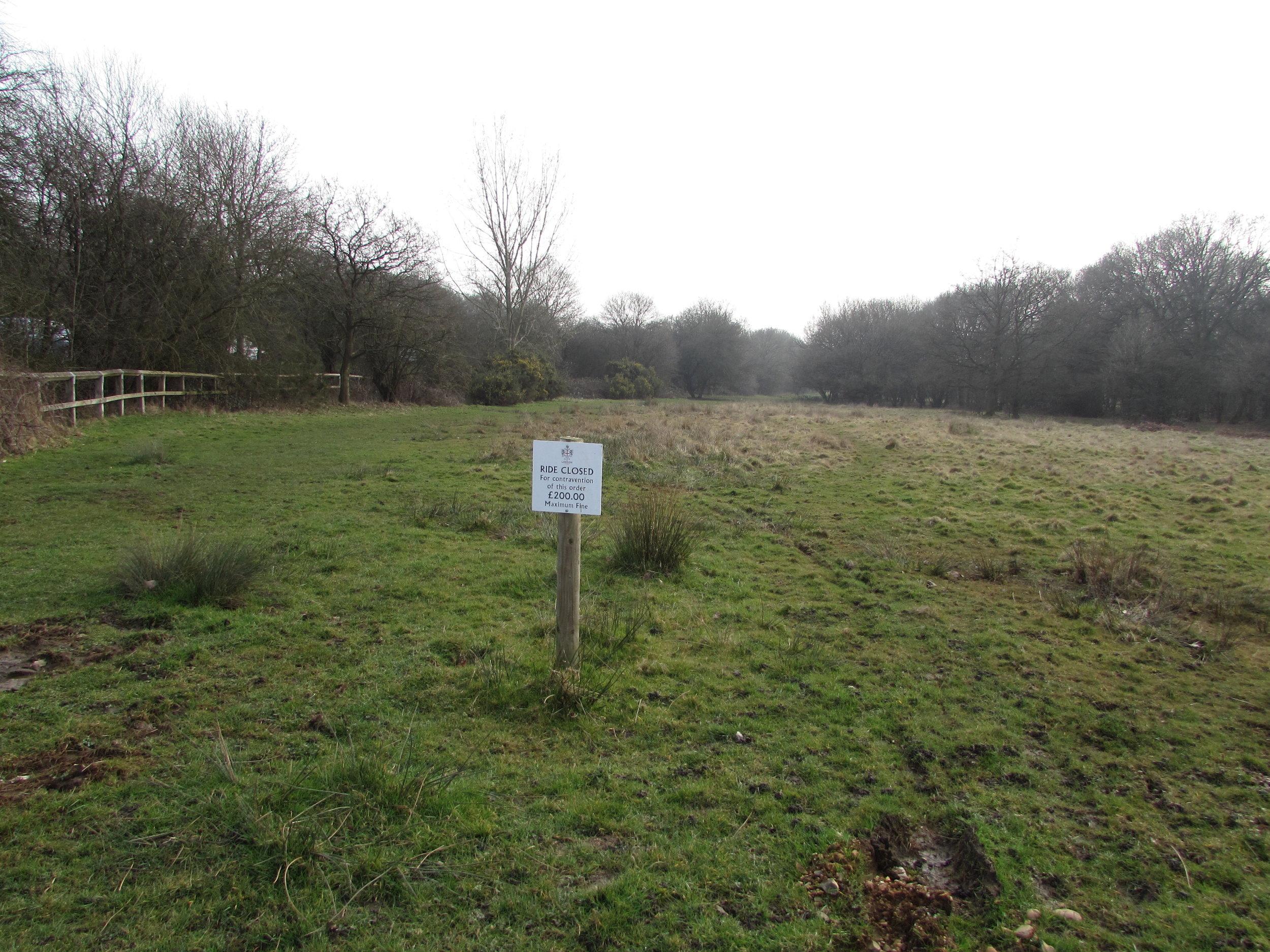 Loughton, Essex II.JPG