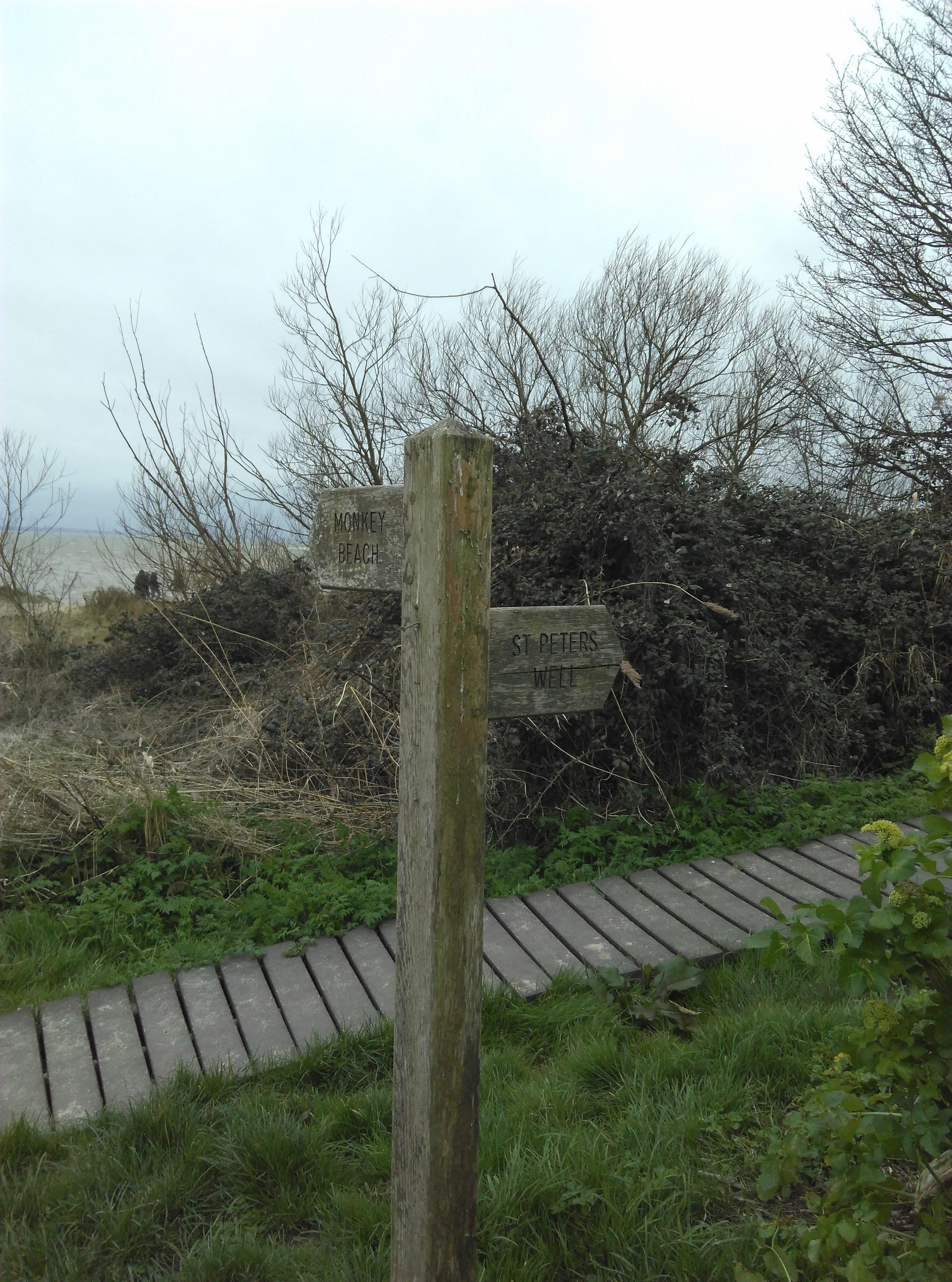 Mersea Island, Essex II.jpg