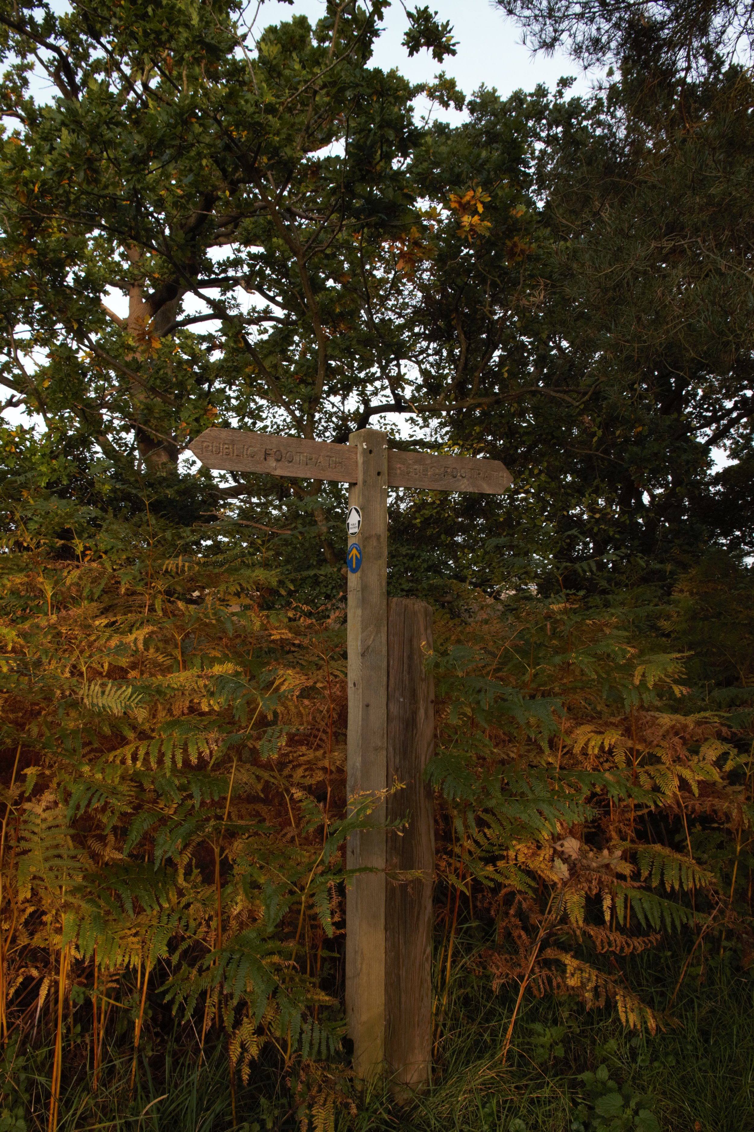 Snape, Suffolk II (2).jpg