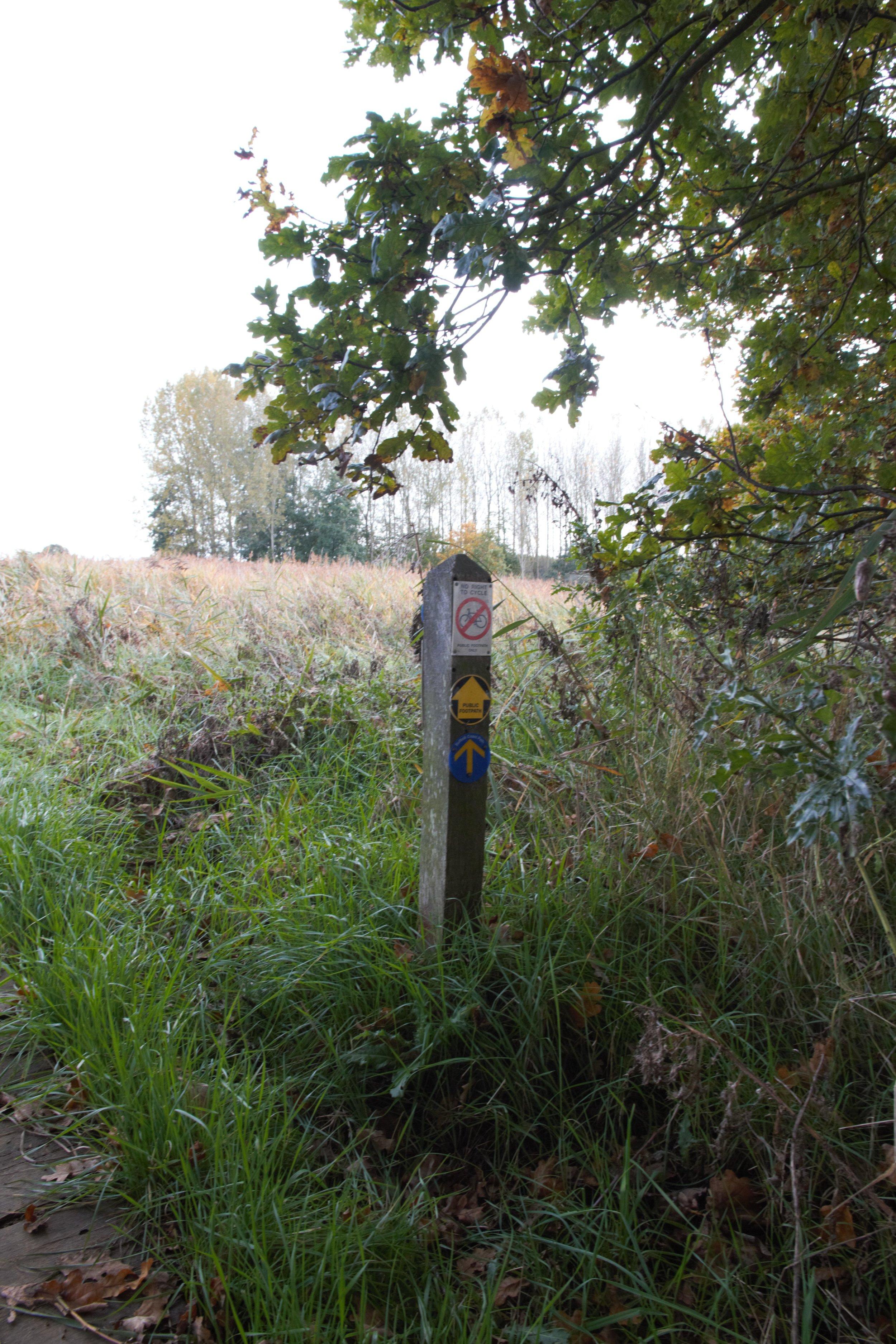 Snape, Suffolk I (2).jpg