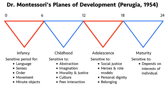 planes of development.PNG