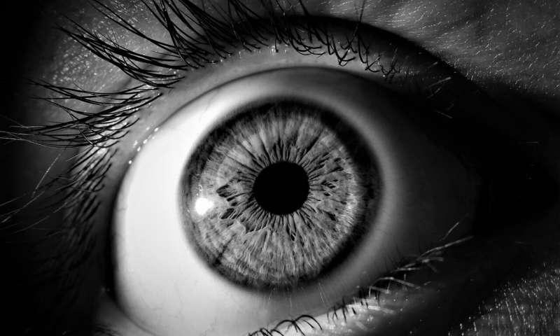 4-eye.jpg