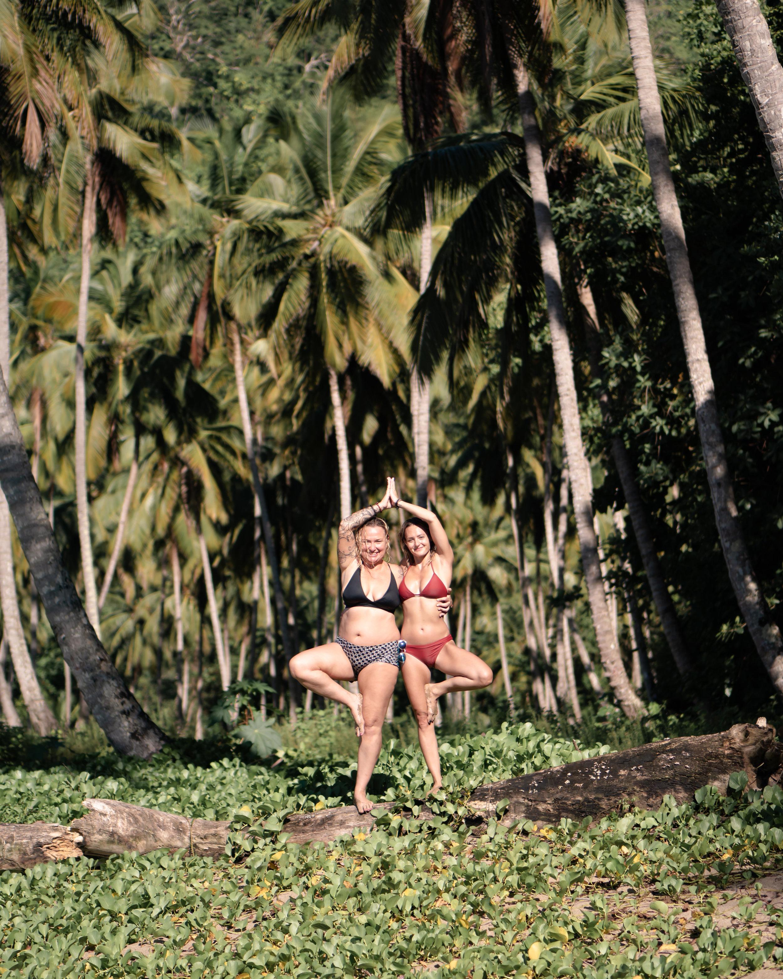 Shell Christine Tree DR.jpg