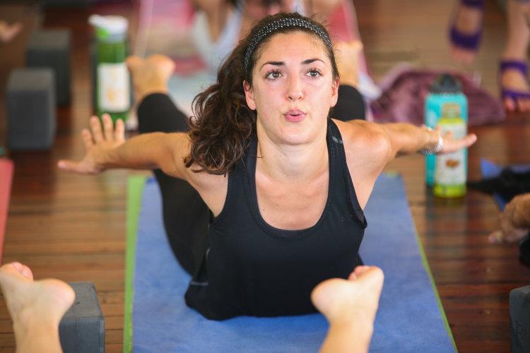 Online Yoga Alliance Approved 200 Hour Yoga Teacher Training Dancing Dogs Yoga