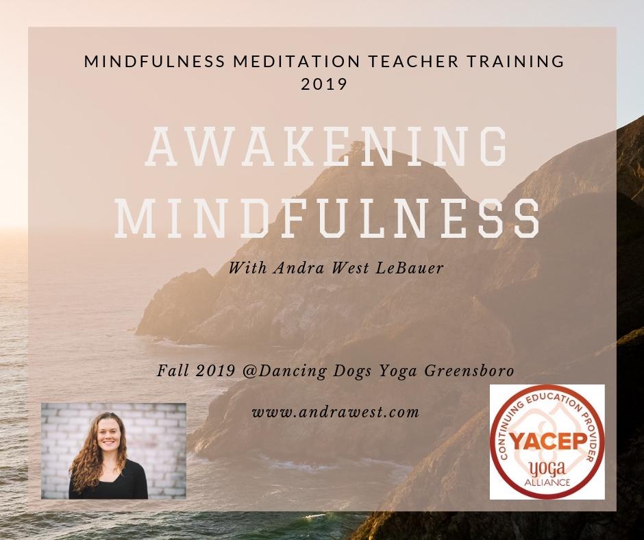 Mindfulness Meditation Teacher Training (2).jpg