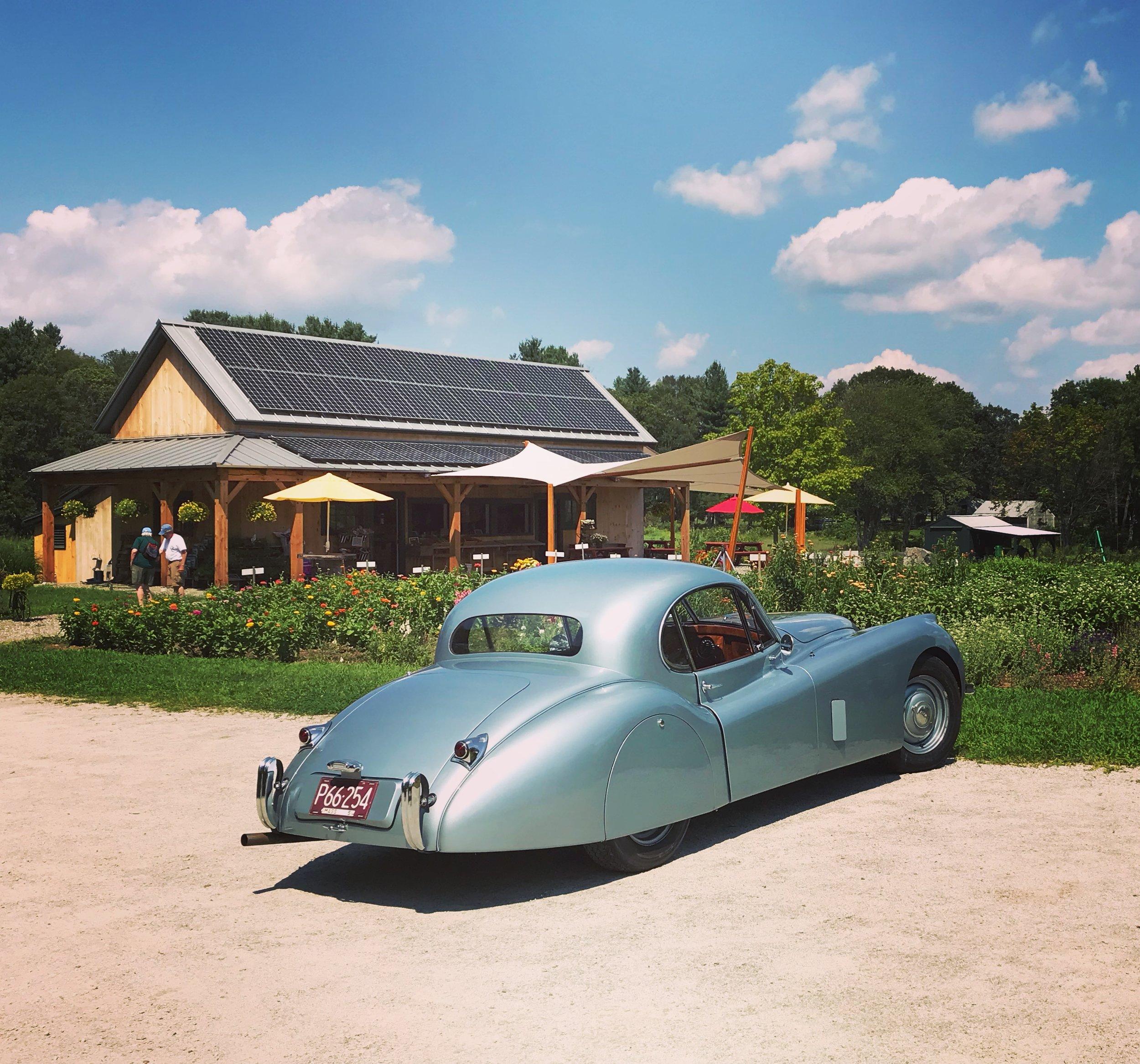 '51 Jaguar visits the market in the summer of 2018