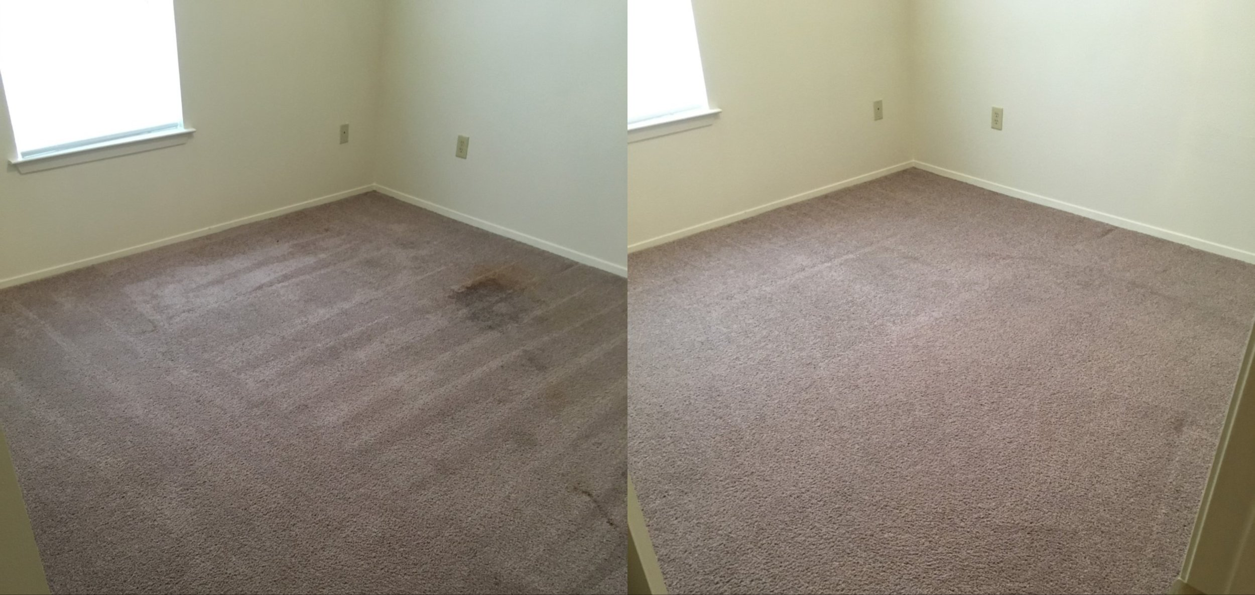 carpetb4after.jpg