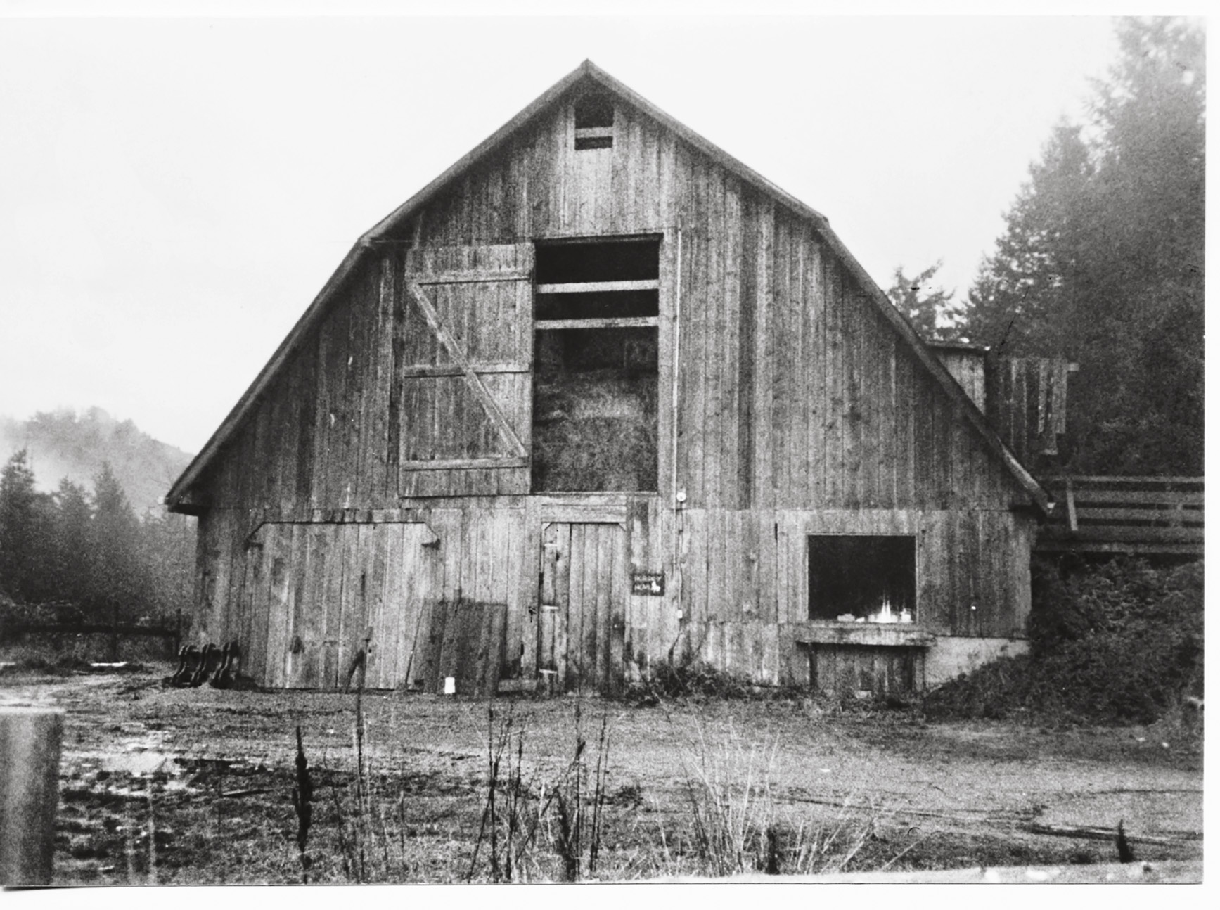 The barn stuffed full with hay.