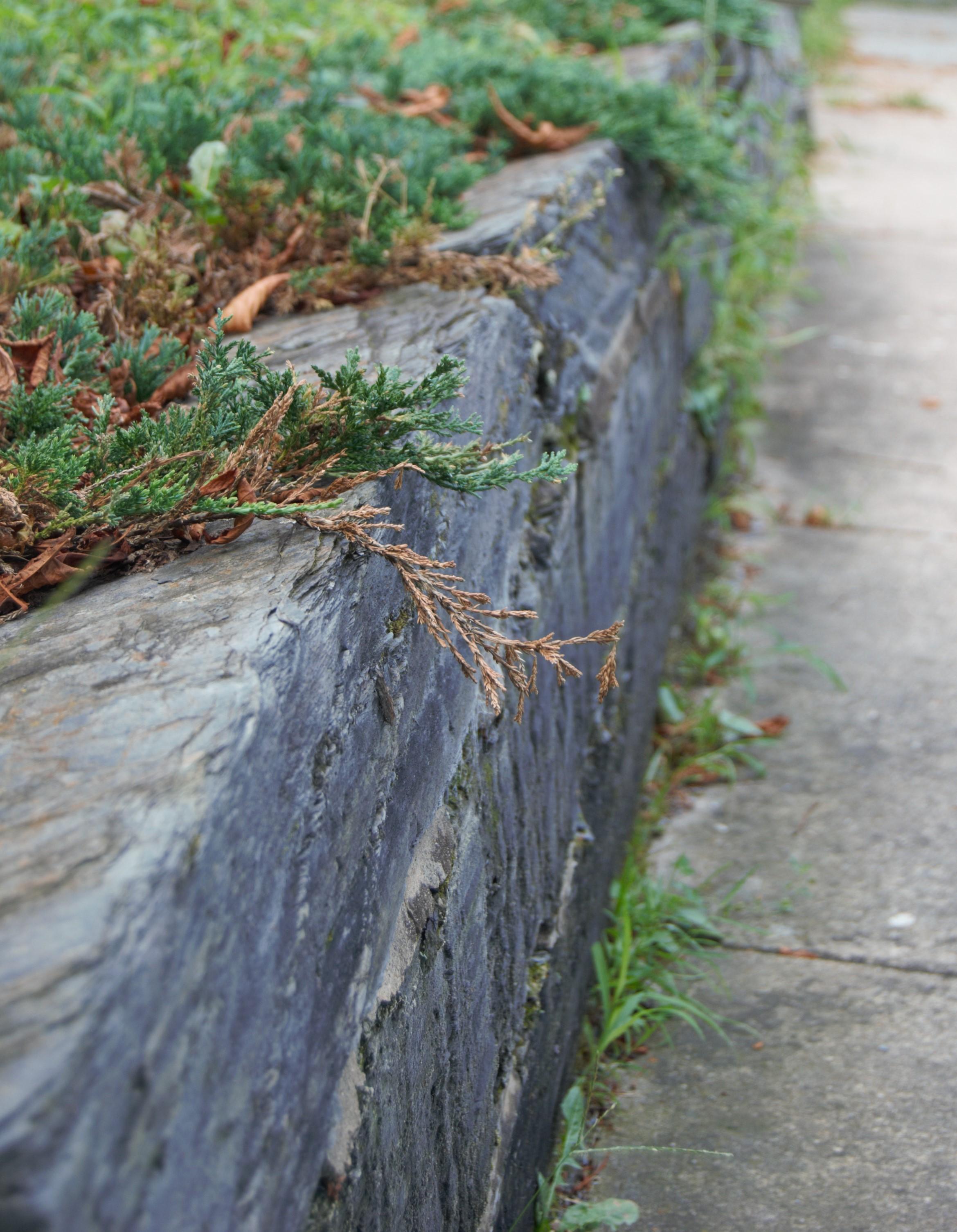 - Slate Landscaping