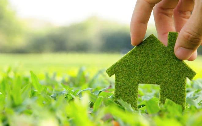 renewable-green-energy_content.jpg