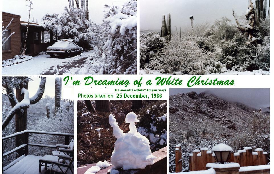 White-Xmas.jpg