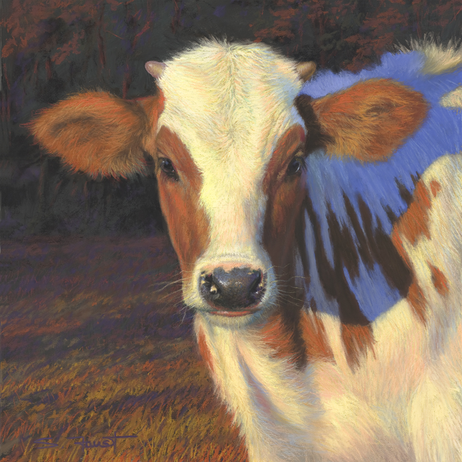 "Little Longhorn  18""x19"" pastel"