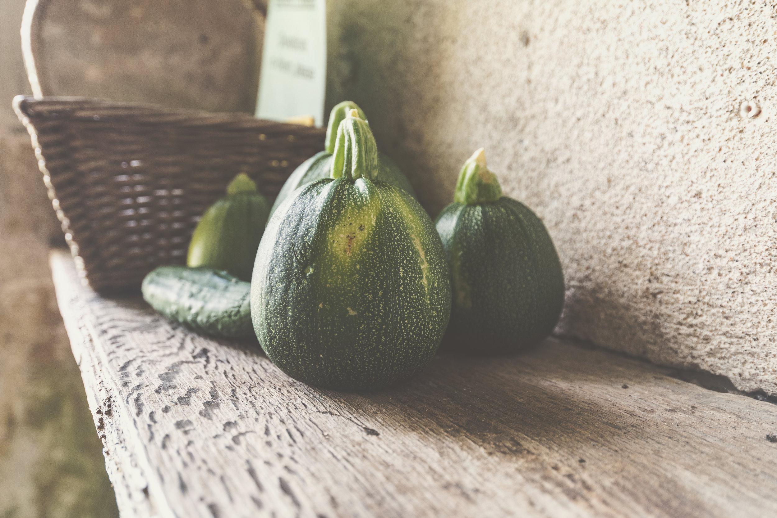 Zucchini - -Round Zucchini (pictured)-Cozelle-Striped