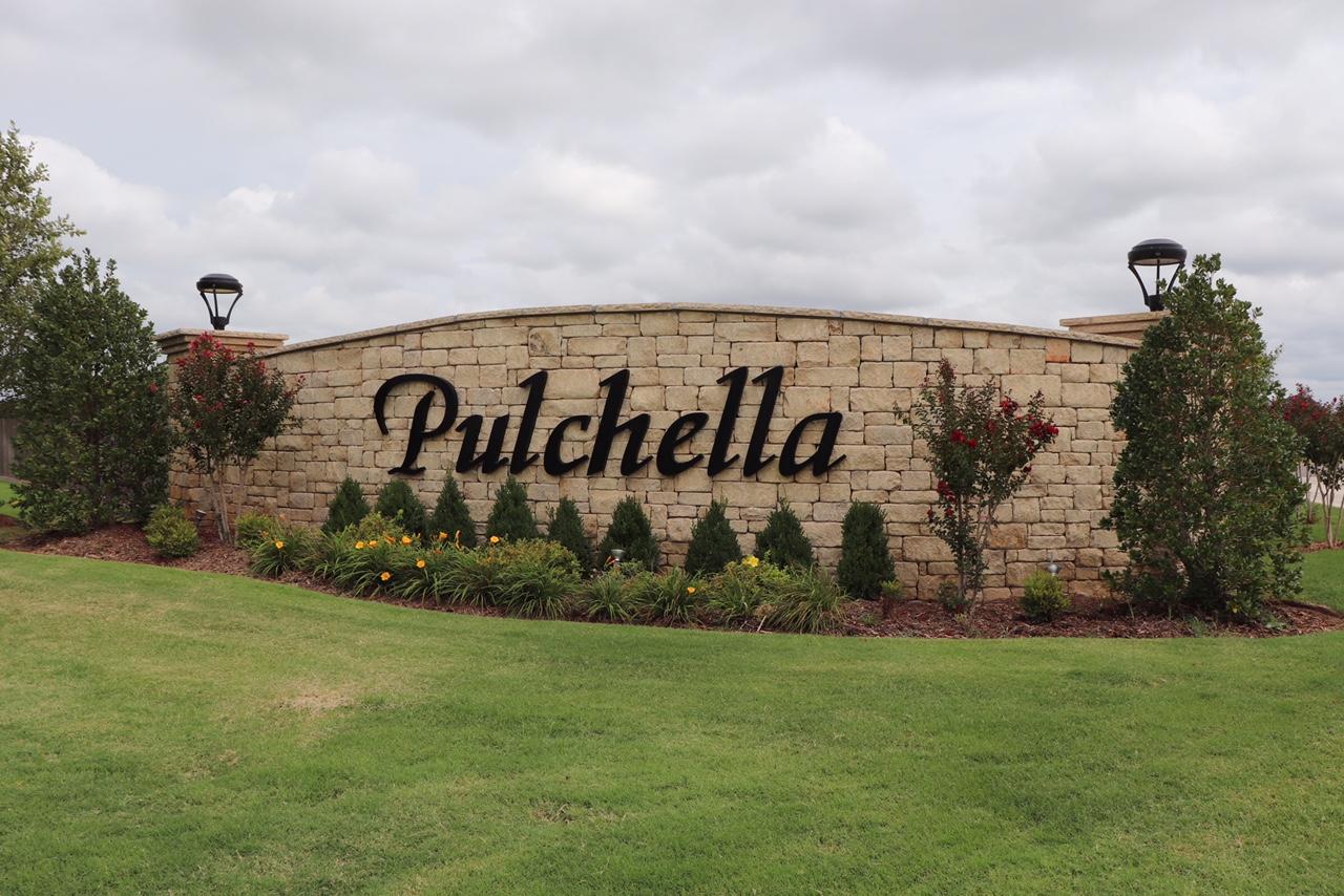 Pulchella New Castle Oklahoma.JPG