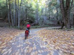 Weehoo+Bike+trailer+bicycle+trailer+trailer+bike.jpg