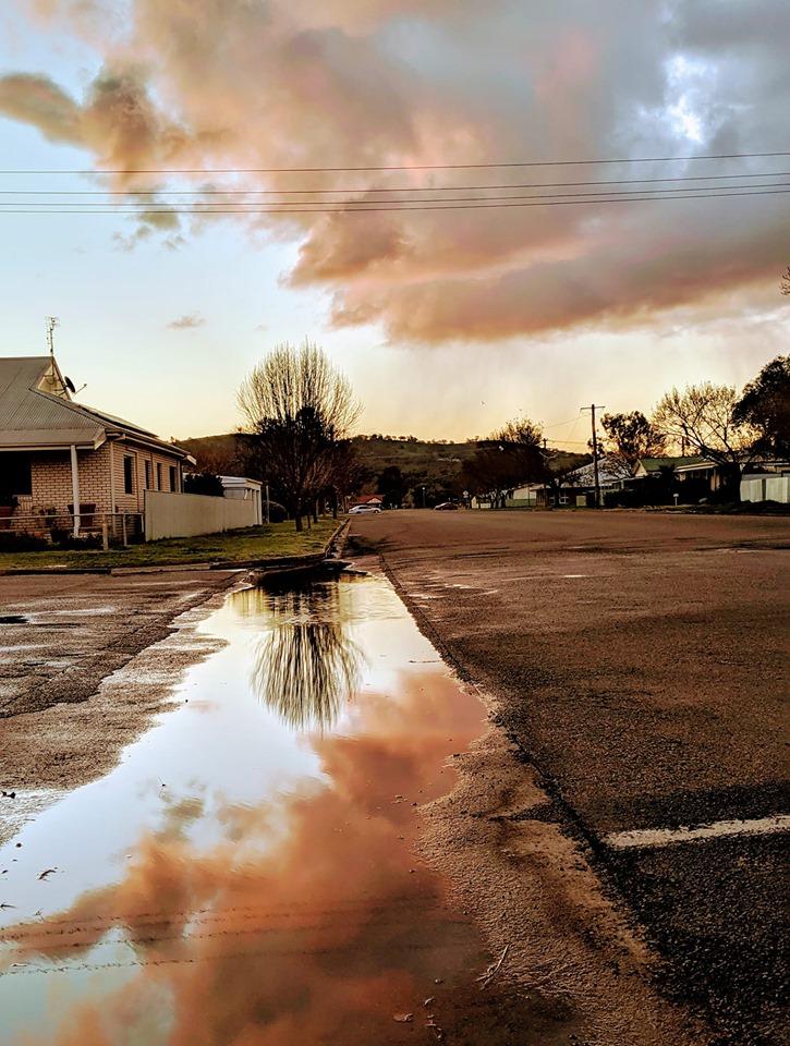 Cootamundra after rain  Photo Credit:   Jenni Pigram