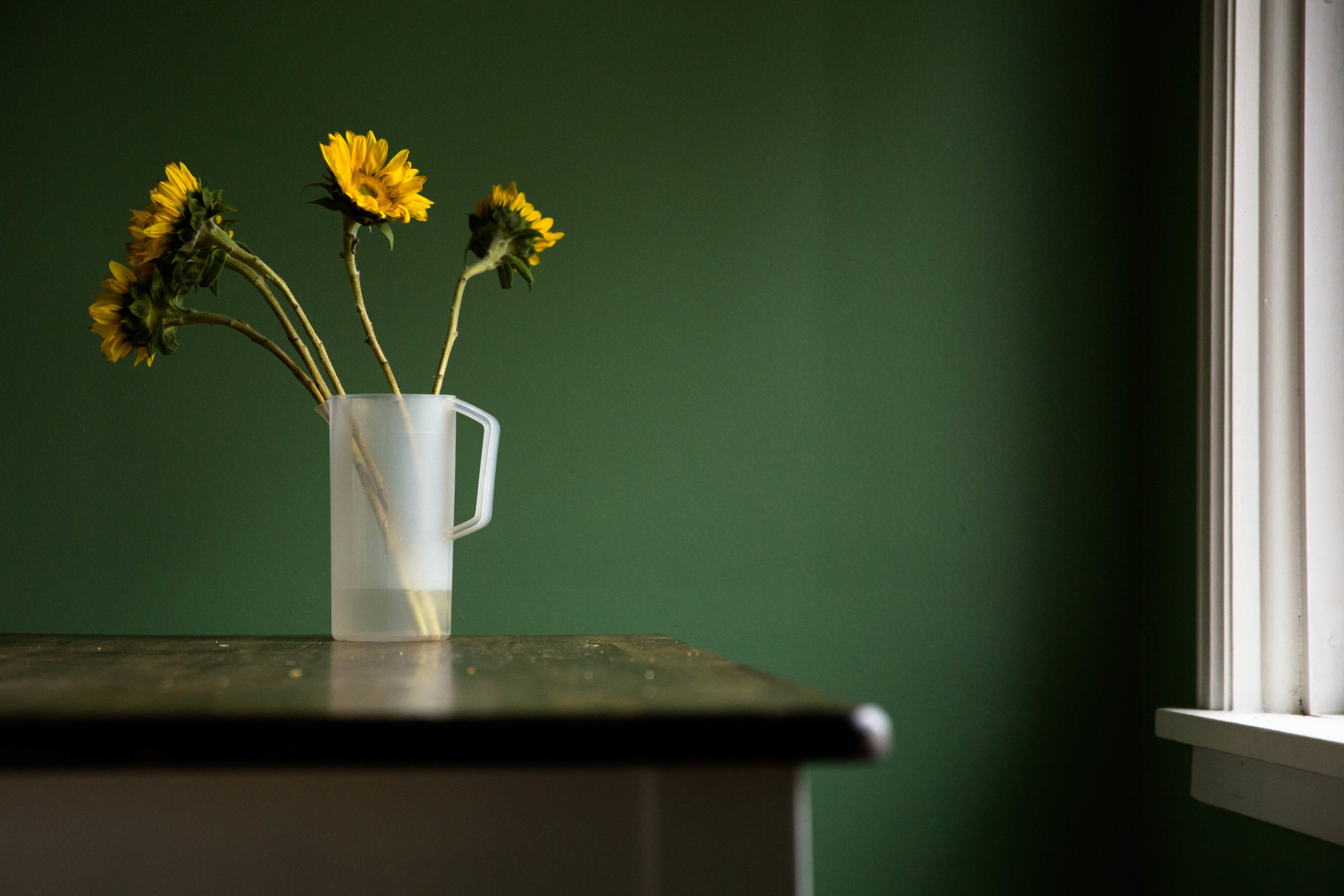 Picture of a bunch of sunflowers in a vase on a kitchen table by a large window