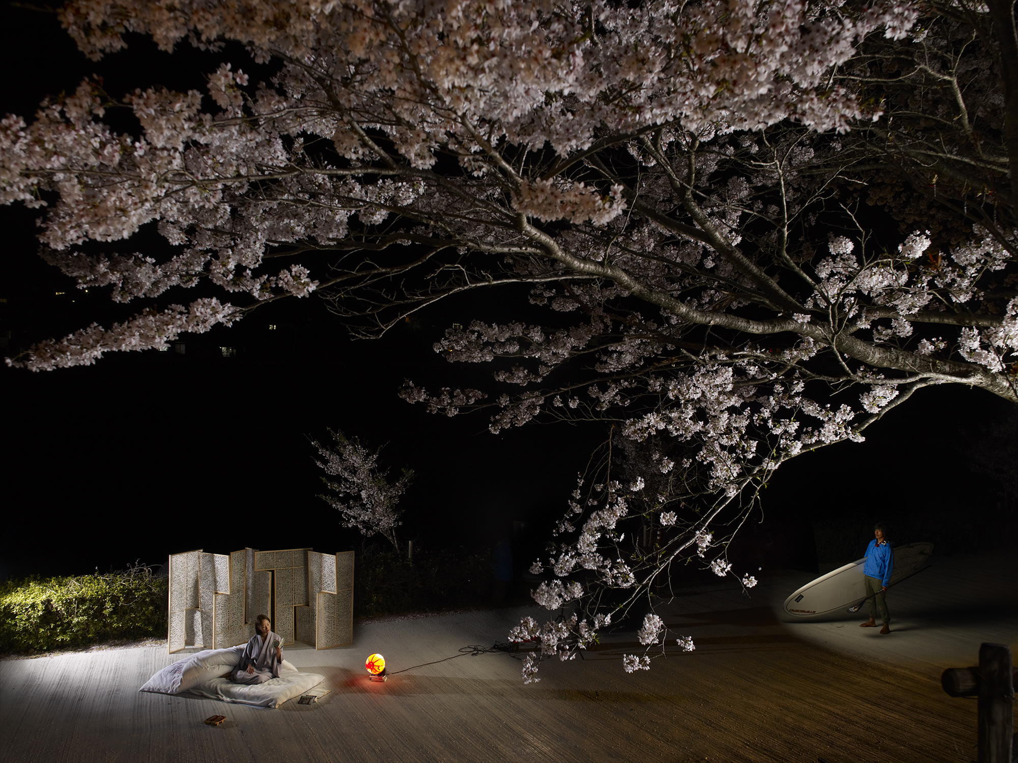 NicolasHenry_SakuraSeiShonagon_Japon.jpg