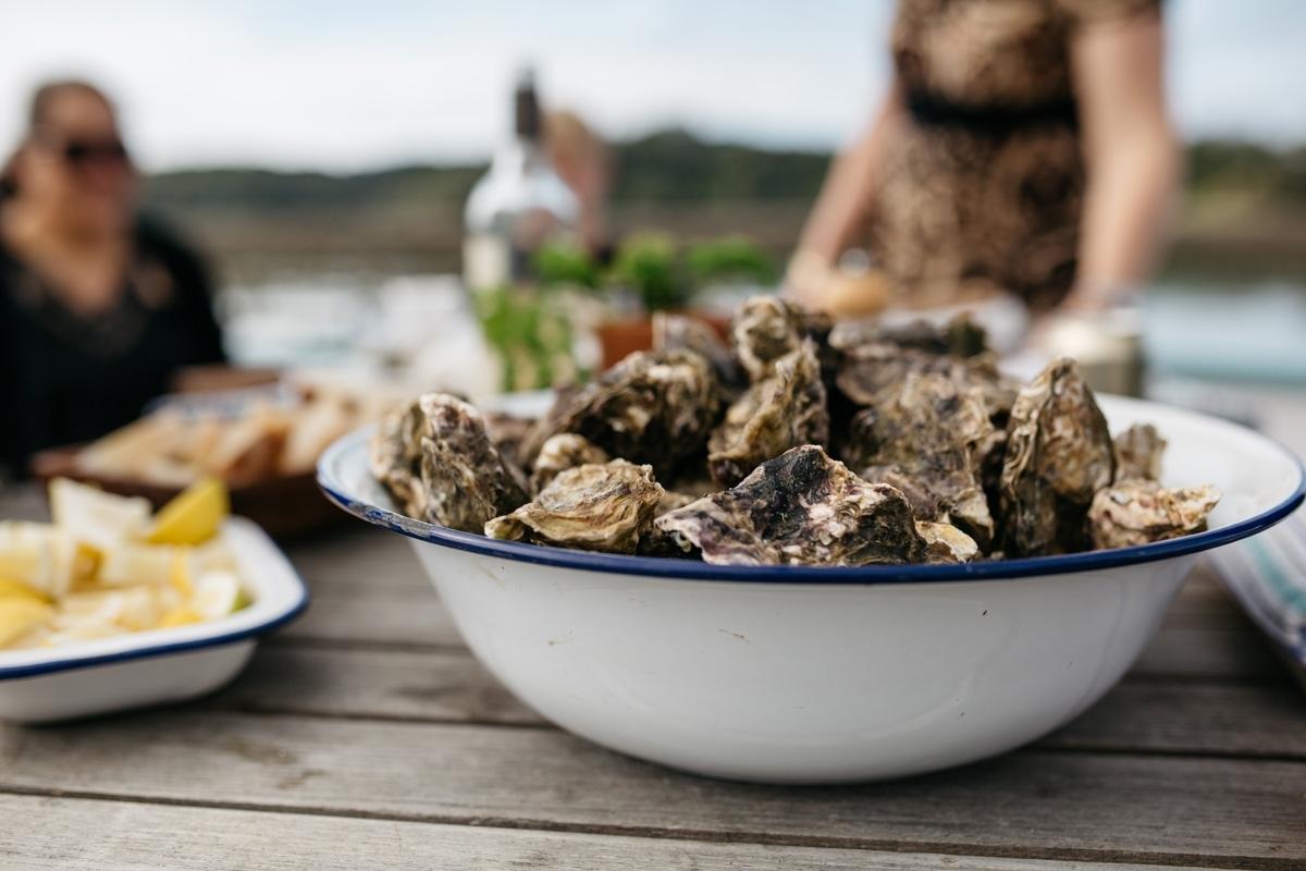 Oyster & Wine Festival Matakana 2018   shuck it!    Learn More