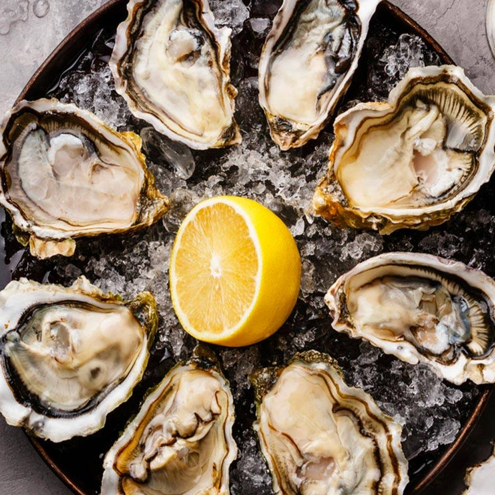 Orata Oysters