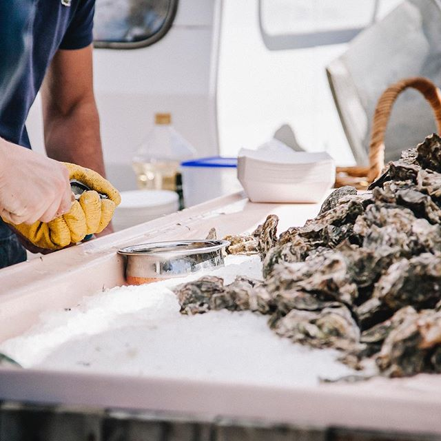 The @oysterfestmatakana is part of Feast Matakana this year! A festival not to be missed on Sunday 7th October 👌🏼 - There will be plenty of these salty beauties to eat, delicious local vinos to drink and oyster shucking competitions to win - let the oyster battles begin 💪🏼 - Get your tickets now before they sell out👇🏼www.oysterfestmatakana.co.nz
