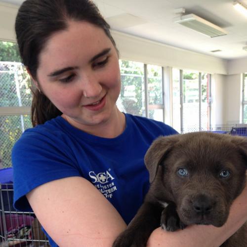 Volunteer in Wellington - Cassie