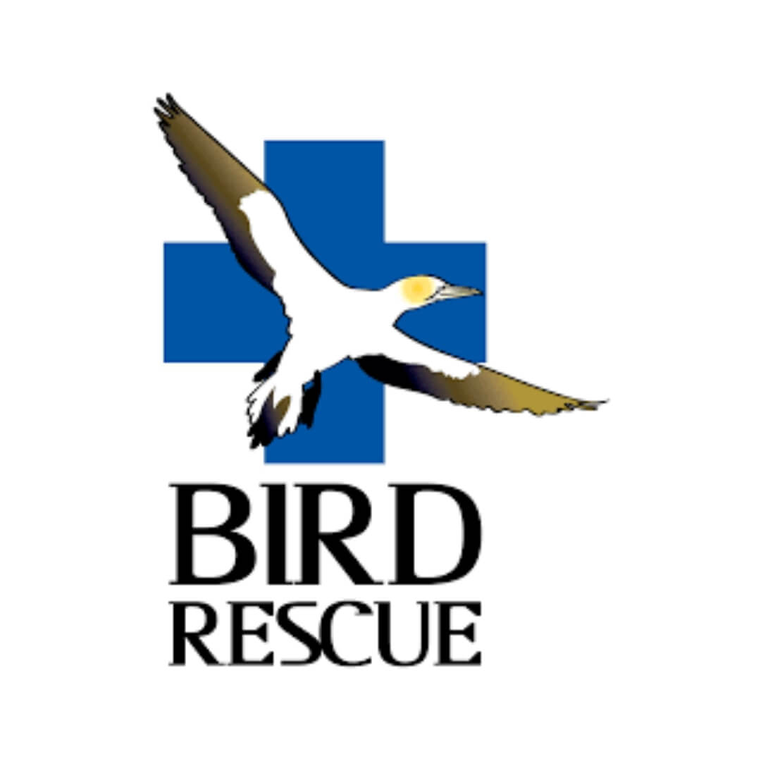 About - The New Zealand Bird Rescue Charitable Trust accepts and cares for all New Zealand birds whether they are native, non-native or pet. Every bird in New Zealand is a NZ bird to us. We assist thousands of birds each year (between 4000 and 5000), many being the victims of cat attacks, road accidents, pollution (such as fishing line and nylon entanglements and botulism) or human cruelty.
