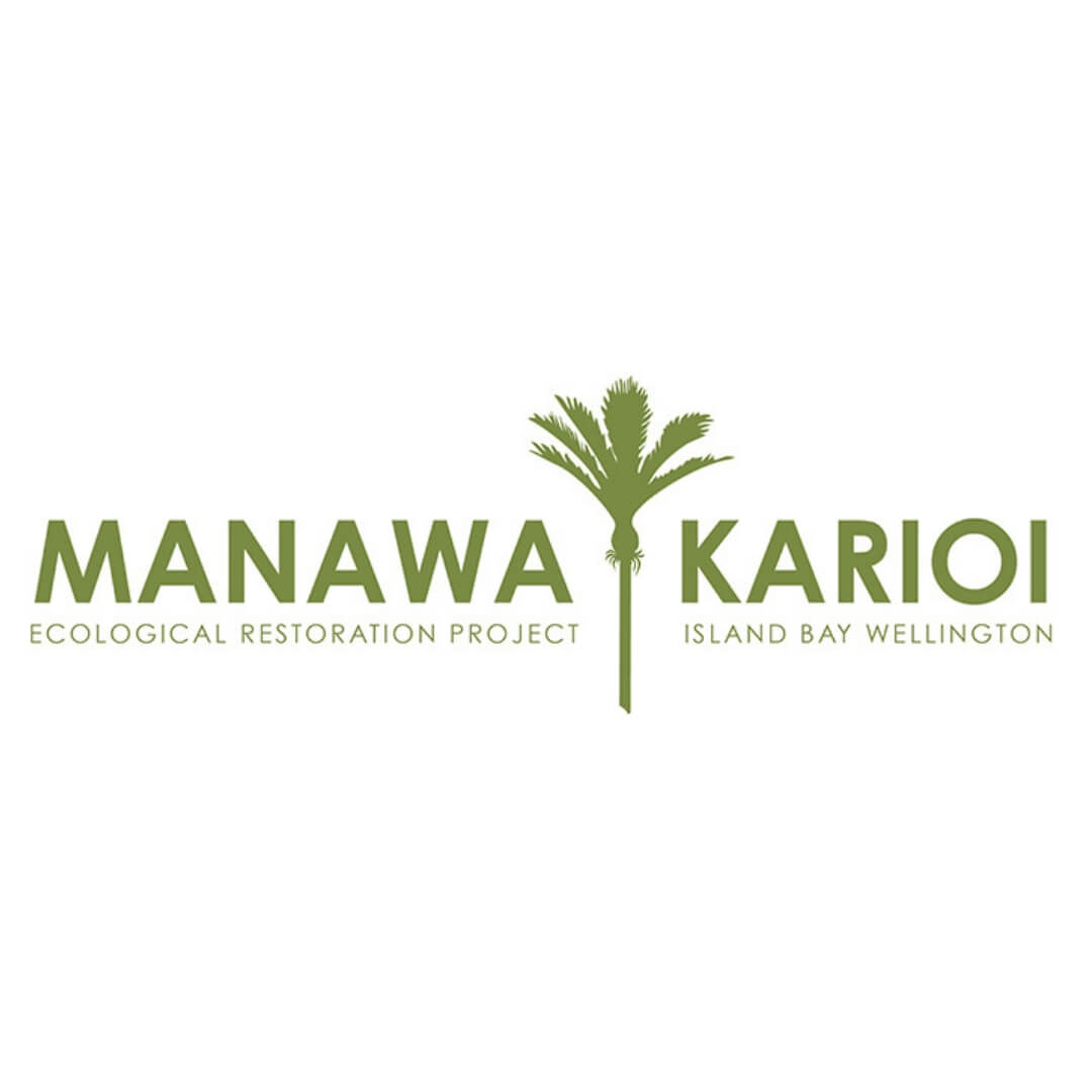 About - Manawa Karioi Society manages 13 hectares of land in Island Bay on behalf of the Tapu Te Ranga Trust which is based at Tapu Te Ranga marae: our objectives in managing the land are ecological restoration and provision of recreational opportunities (walking, running, mountain biking, horse riding). Our current priorities are planting climax forest species, weed control, installing track signage and tracking building.