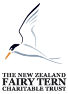 About - The NZ fairy tern Trust works to help our rarest bird, the NZ fairy tern survive and prosper in its local habitat. We do advocacy work, assist with monitoring the birds during the breeding season, manage a predator control programme and fundraise to support these activities.