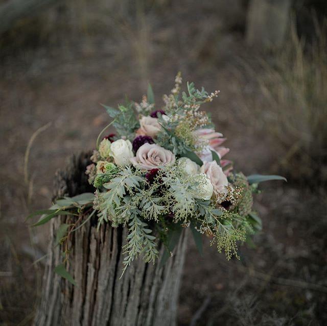 Matilda // Protea + Rose + Ranunculus ✨