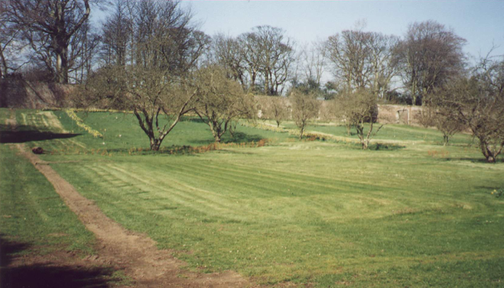 1995 – BARE BONES, WATER SUPPLY INSTALLED AND HEDGE PLANTED