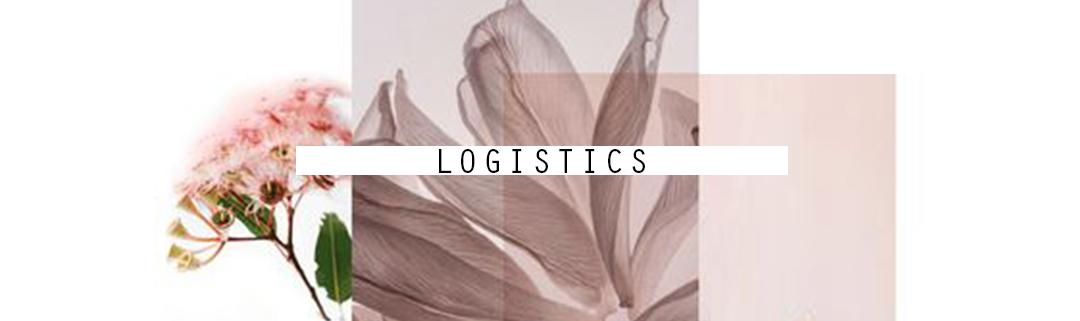 Alpha 2019 logistics.jpg