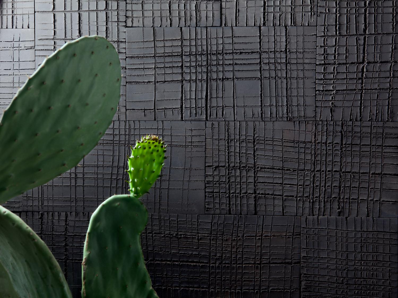 terre-colorate-(7).jpg