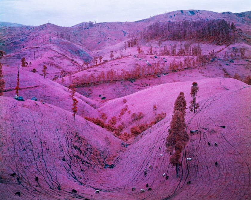 doorofperception.com-richard_mosse-7-840x668.jpeg