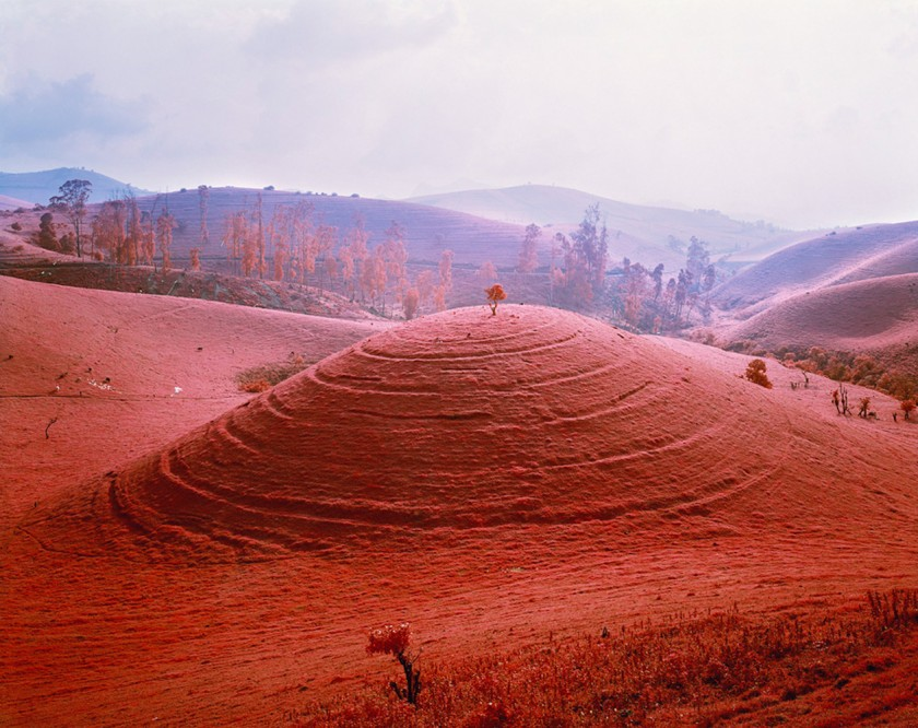 doorofperception.com-richard_mosse-23-840x666.jpeg
