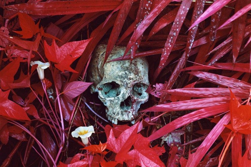 doorofperception.com-richard_mosse-1-840x560.jpeg