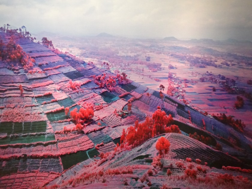 doorofperception.com-richard_mosse-13-840x630.jpeg